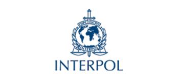 31 Interpol